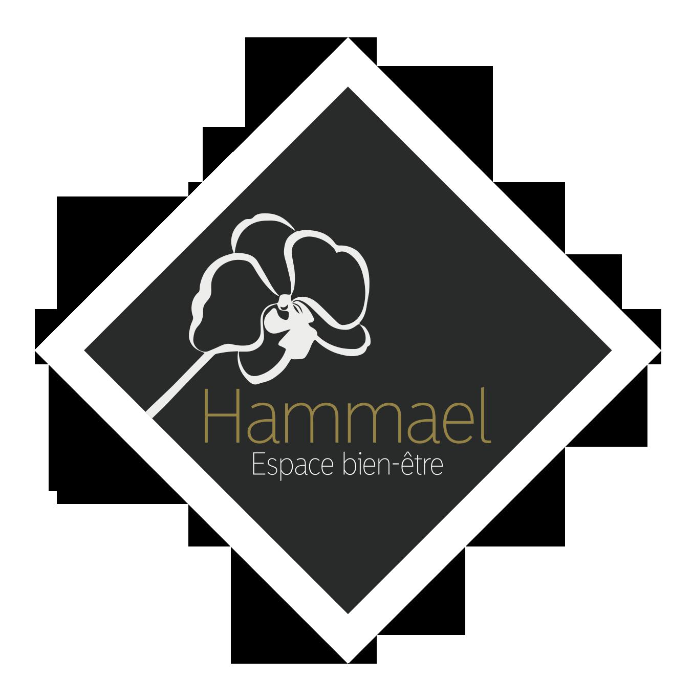 HAMMAEL-logo